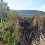 Fotó: A nádasban kötött ki egy autó a Balatonnál