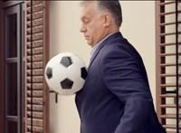 Az én hetem: Parti Nagy Lajos és Orbán Viktor pöttyös lova