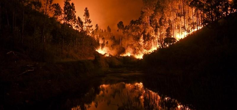 Legalább 58 áldozata van a portugál erdőtűznek - videó