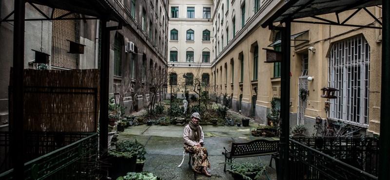 Nézzen be Budapest legkülönösebb lépcsőházaiba
