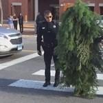 Fának öltözött egy férfi, úgy akadályozta a forgalmat – videó