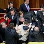 Videó: nyúlnak öltözött egy újságíró az ukrán parlamentben