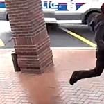 Vajon ki nyer, a bottal járó férfi, vagy a fegyverrel menekülő bűnöző? – videó