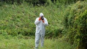 Egy agyonvert embert találtak egy balatonfűzfői ház udvarán