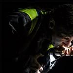 Fotók: Békakatasztrófát akadályoztak meg a 2-es útnál az állatvédők