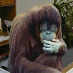 Bízza a ContactMonkey-ra a majommunkát!