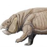 Lengyelországban találták meg a dinók kortársát, olyan volt, mint egy elefánt