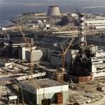 Ég az aljnövényzet Csernobilban