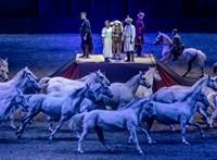 Kultúra a NER-ben: több százmillió lovas színházra, Vidnyánszkyék milliárdokról dönthetnek