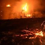 Sokkoló videón menekül egy család a kaliforniai erdőtűzből