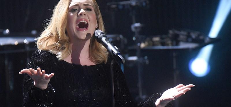 Adele lazán visszautasította a zenészek álomajánlatát