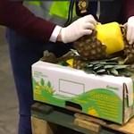 Ananászba rejtve csempészték a több száz kiló kokaint – videó