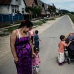 Védőnőket kísértünk a cigánysortól a budai hegyvidékig – Nagyítás-fotógaléria
