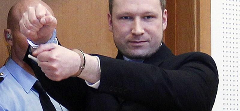 """""""Free Breivik"""" oldal is alakult a Facebookon"""