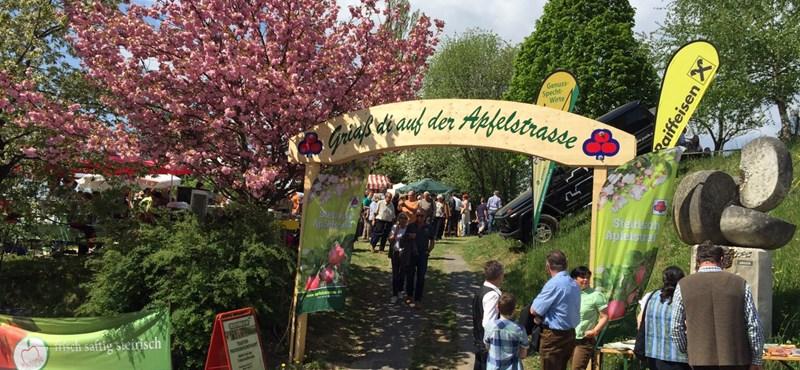 Gasztroturista : kalandozás Ausztria kertjében