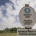 Megszólalt a kormány a mai Ab-döntéssel kapcsolatban