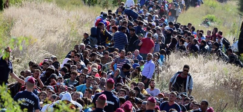 Vizsgálja a TEK a menekültek által hátrahagyott mobilokat