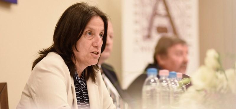 Megvan a Klebelsberg Központ új vezetője