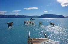 Mennyiért tudná megvenni Trump Grönlandot?
