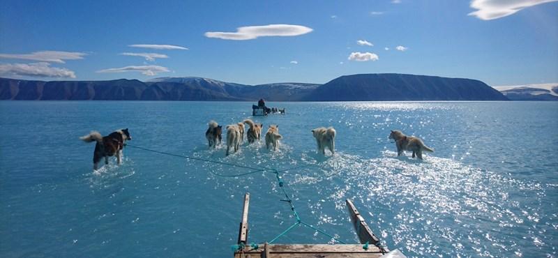 Ha azt hiszi, hogy a klímaváltozás csak mese, nézze meg ezt a fotót – csak előtte üljön le