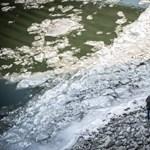 Daruval kellett kimenteni a Patkányospusztai tó jegéről egy kocsit