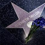 Ön is elkésett! Eladták Elizabeth Taylor luxus villáját