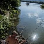 Nincs adóigazolványa? Ugorhat a jövő évi horgászengedélye