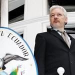 Akár egész életét a nagykövetség épületébe zárva töltheti Assange