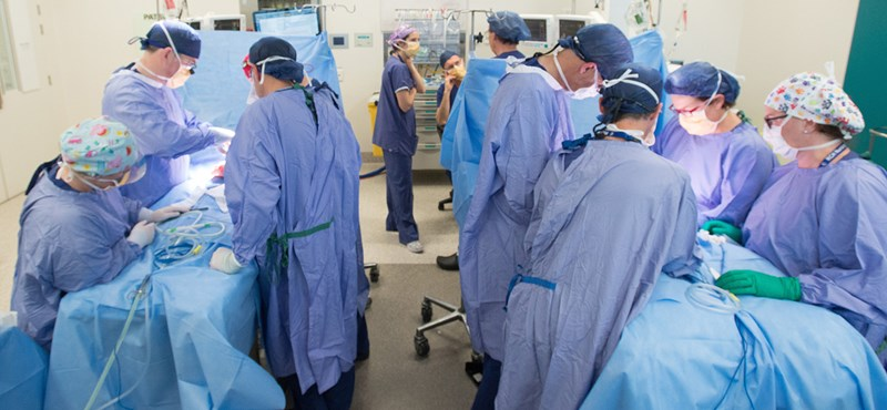 Sziámi ikerlányokat választottak szét az orvosok egy hatórás műtéttel