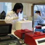 Alacsony női létszám a tudományos területeken