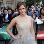 Vendégelőadó lesz Emma Watson a világ egyik legjobb egyetemén