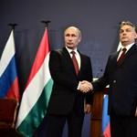 Nobel-békedíjat adna Orbánnak a Putyin-barát gittegylet
