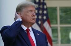 Már az ausztrál jogászok is Nobel-békedíjat adnának Trumpnak