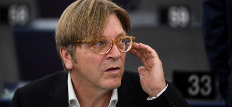 "Family Family Verhofstadt joined Momentum ""width ="" 800 ""height ="" 370"