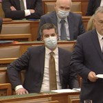 Az egyedülállók örökbefogadását megnehezítő törvényt is elfogadta a Parlament
