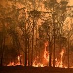 A bozóttüzek miatt Melbourne levegője a legrosszabb a világon