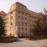 Egyetemi és főiskolai nyílt napok január 10-től 16-ig