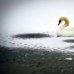 Veszélyes a Balaton jegére menni, és az is marad