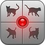 Tényleg meglepő: fordító alkalmazás ember és macska között