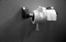 Írásba adta a győri kormányablak: nincs pénz vécépapírra