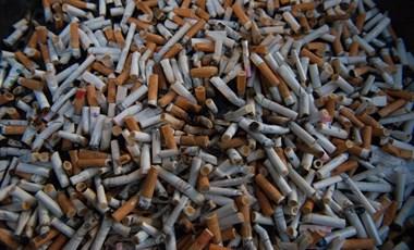 Nem vesz fel dohányzó oktatókat egy japán egyetem