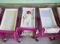 Az ország leggazdagabb térségeiben csökken leginkább az abortuszok száma