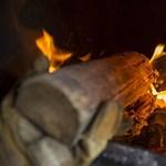 A Nébih tűzifahirdetéseket töröltetett a Jófogáson
