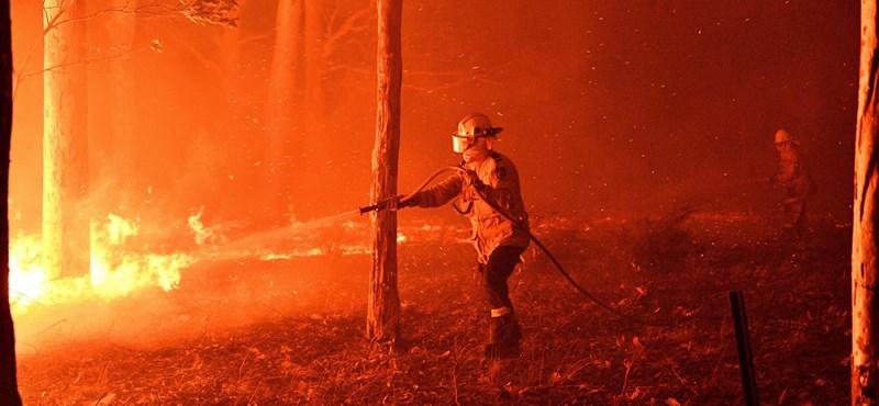 Az ausztrál bozóttüzek miatt még tovább emelkedik a légköri szén-dioxid-szint