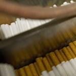 Bővül a pécsi dohánygyár