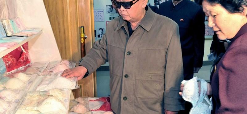 Kim Dzsongil, aki Godzillát rabolt