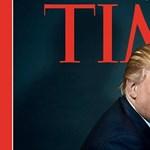 Ezt a molylepkét Trumpról nevezték el, mert ugyanúgy néz ki