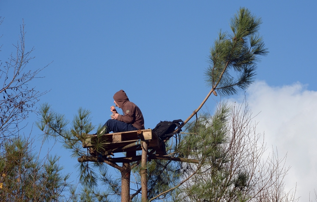 Fák világnapja - FRANCE, Notre-Dame-des-Landes : A protester takes a lunch on the top of a tree in a protected swampland in Notre-Dame-des-Landes, near Nantes in western France, on November 25, 2012, one day after squatters' eviction and clashes with anti
