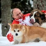 Vlagyimir Putyin olyan humanista emberideál, hogy nem hiszed