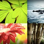 Csodálatos természeti fotók háttérképnek, HD felbontásban!